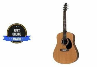 best fingerpicking guitar