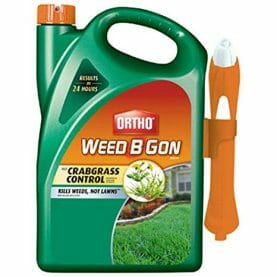 best weed control