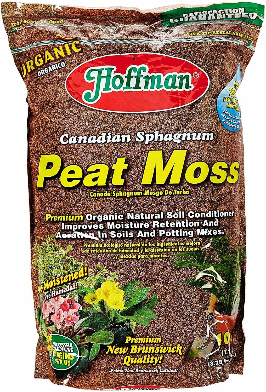 Best Mulch For Azaleas