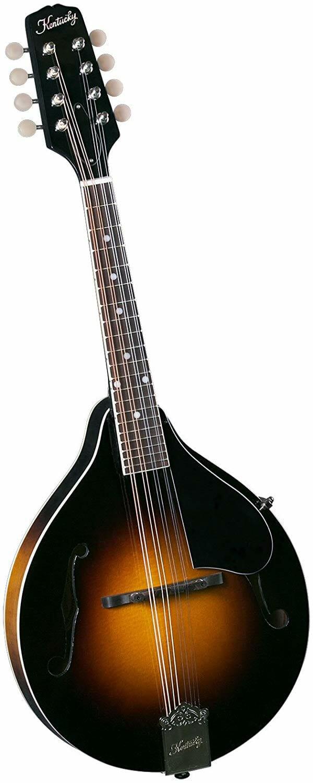 Best Mandolin Under 500