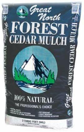 Best Mulch For Fruit Trees