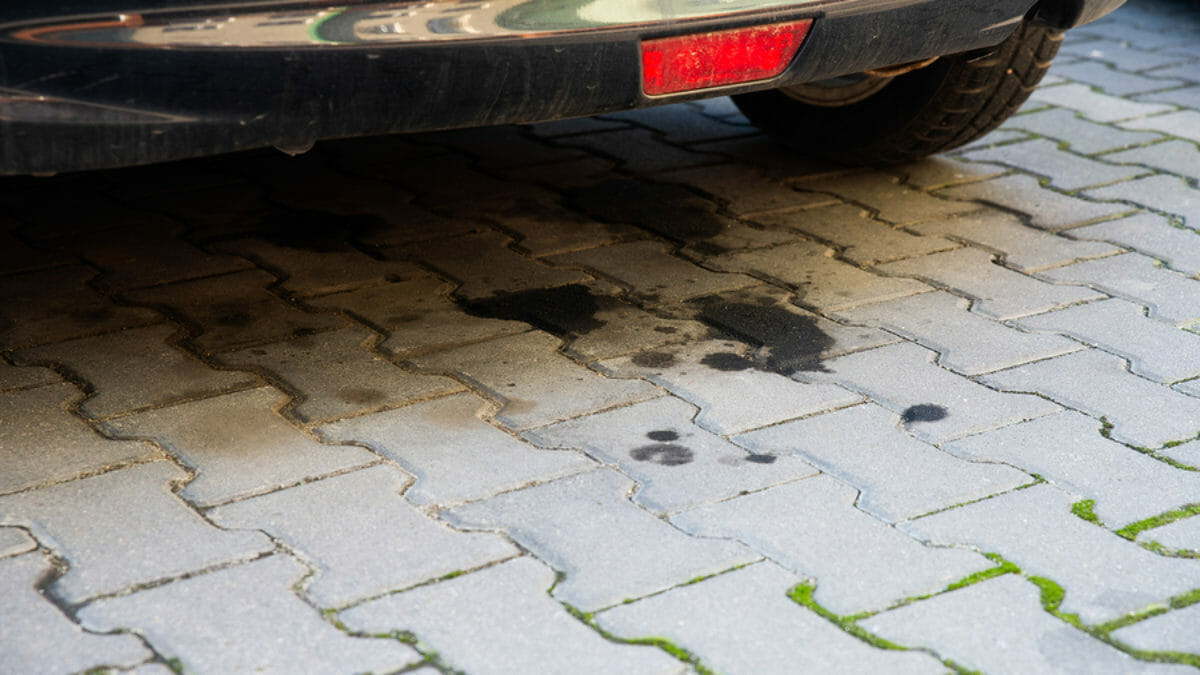 Do you have a transmission fluid leak when parked?